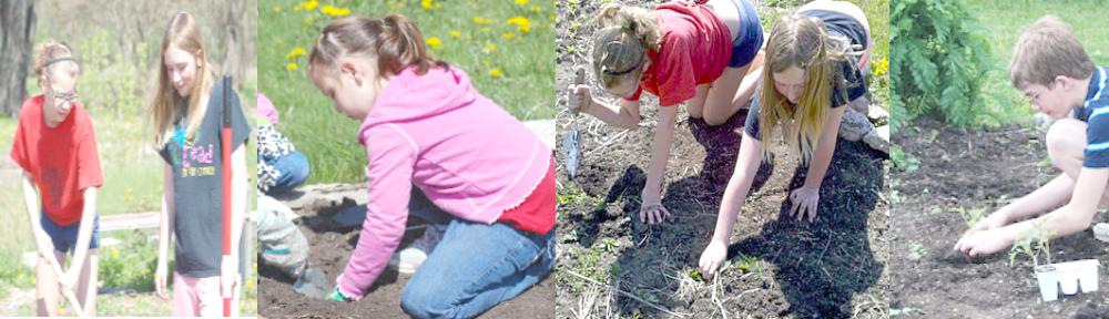 Cedar Falls Community Gardens Garden Rules | Community